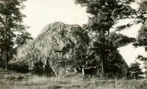 Pastva u Váňova kamene